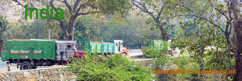 Colourful lorries in India parked in a scenic setting